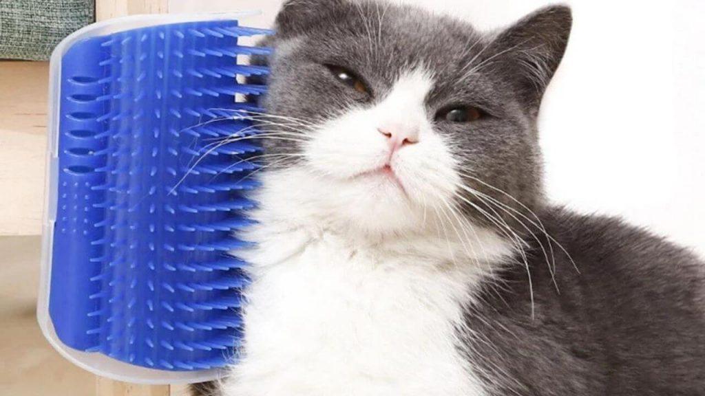 Cat Self Groomer Wall