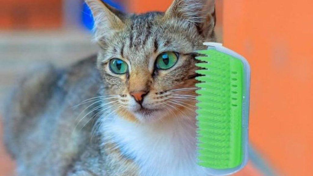 Cat Self Grooming Corner Wall Brush