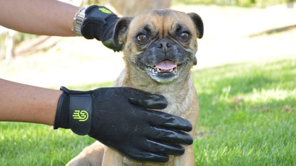pet grooming gloves pair