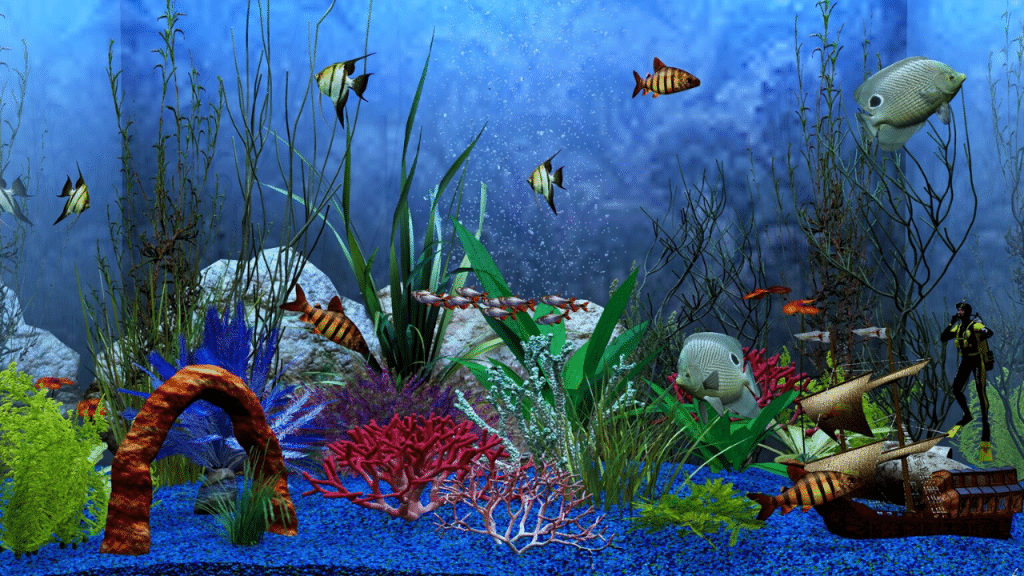 This image has an empty alt attribute; its file name is aquarium-cleaner-for-algae-1024x576.png