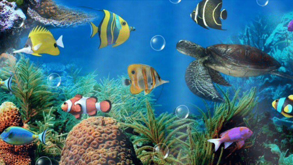 This image has an empty alt attribute; its file name is aquarium-cleaner-for-glass-1024x576.png