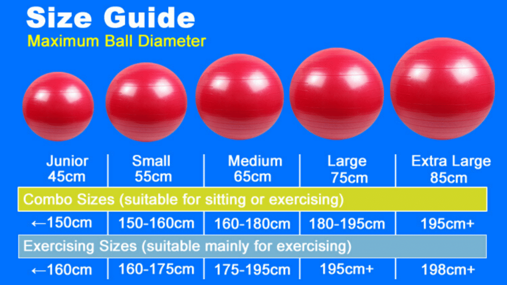 This image has an empty alt attribute; its file name is best-Exercise-Ball-with-bands-1024x576.png