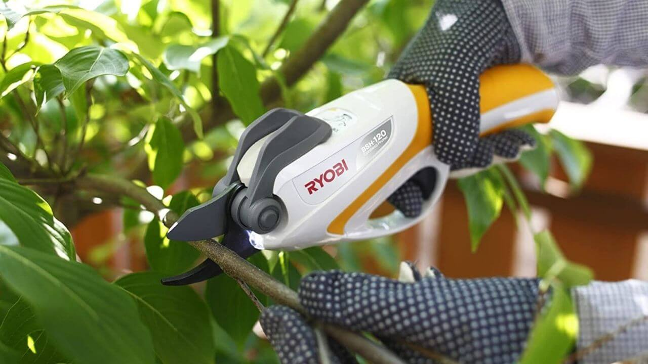 best professional electric pruning shears