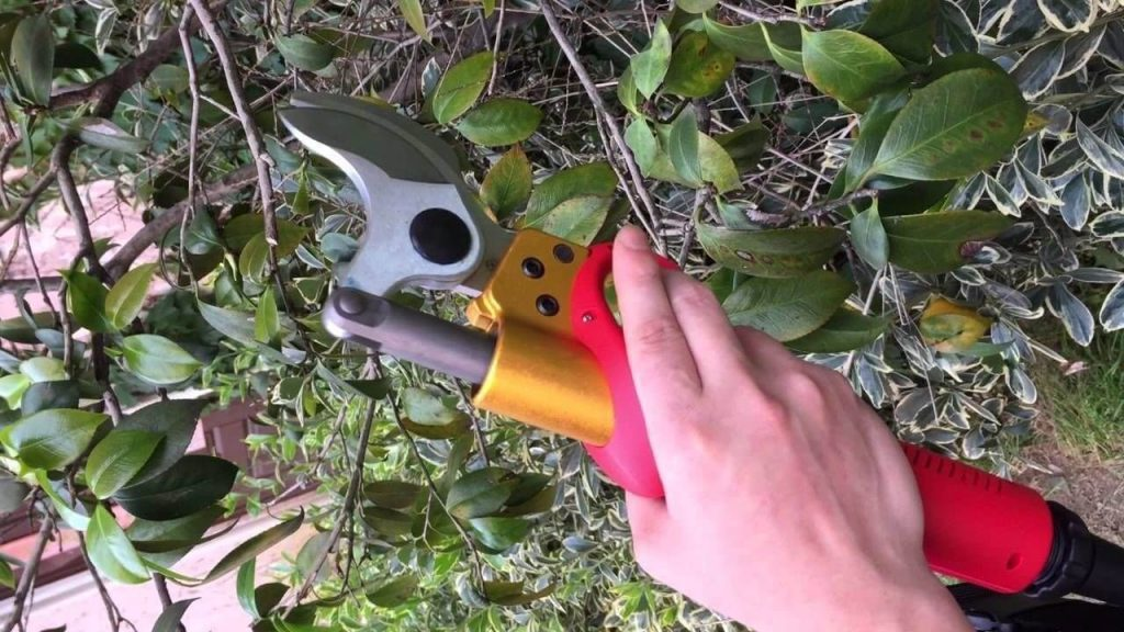 professional electric pruning shears