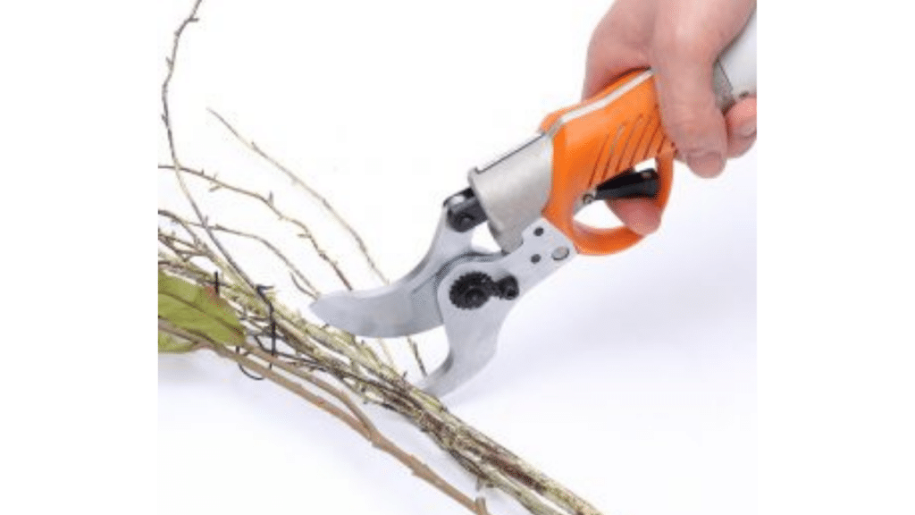 This image has an empty alt attribute; its file name is Electric-Garden-Scissor-for-grooming-1024x576.png