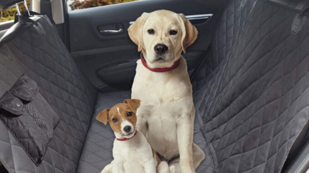 best dog seat covers for suv