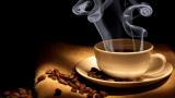 Top 10 Best USB Coffee Mug Warmer Online In 2020: Review & Buyer's Guide