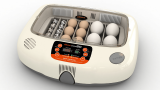 Top 10 Best Hatching Egg Incubator Online In 2020: Review & Buyer's Guide