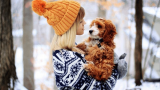 The Best Dog Sweaters Online (Review): My Pet Need That Kind Of Attention
