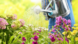 Best Water Timer For Garden: The Key To Saving Water In 2020